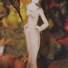 demoiselle_detail