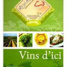muscadet-appellation-controle-bag-in-box-