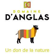 logo_danglas